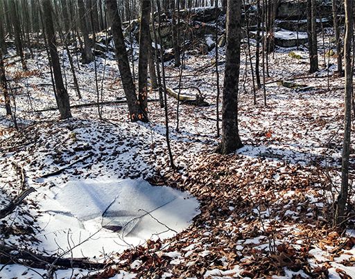 Photo of a circular sheet of ice, collapsed in the center, that formed over a now-drained puddle